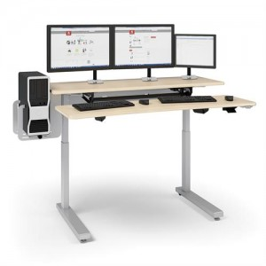 Ergoton Sit Stand Desk WorkFit and Elevate